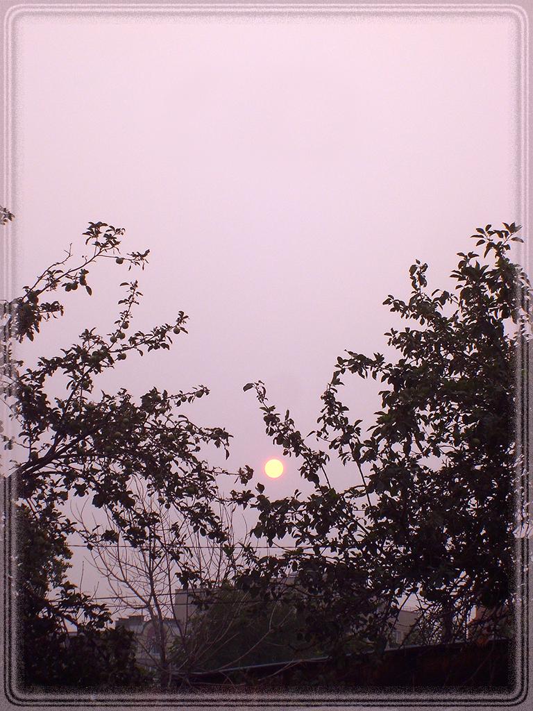 Солнце падало во мглу...