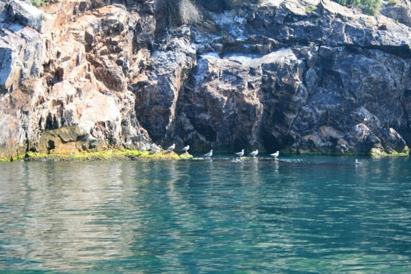 Островок в Мраморном море