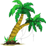 пальмы море (16).png