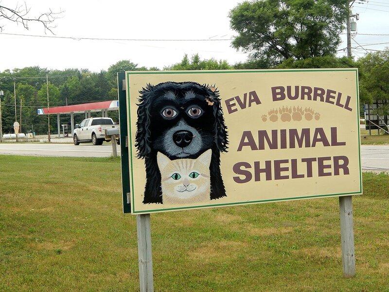 Animal Shelter.
