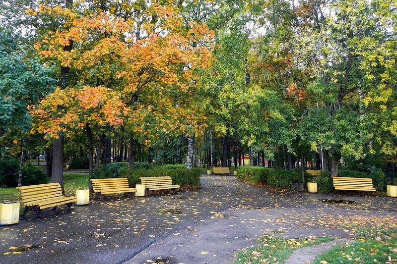 Осень в Александровском саду: аллеи парка