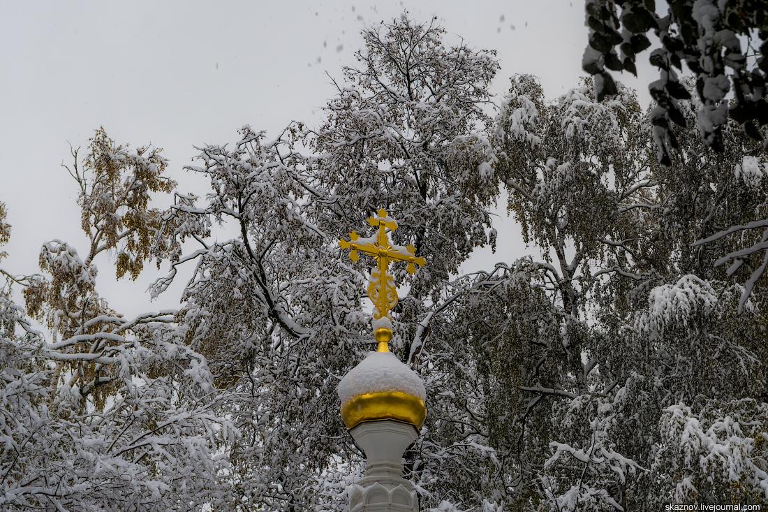 Погода в пойковском на 7 дня