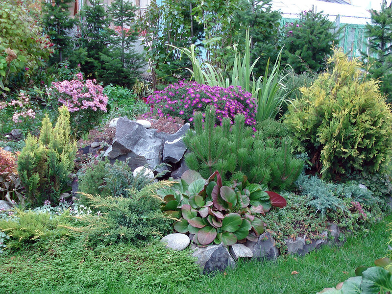 По сибирским садам! Красивый сад! Идеи!