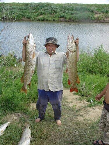 рыбалка на казахстане тараз