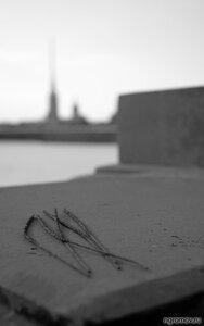 Праздник кончился (бенгальский огонь, монохром, Петербург, Петропавловская крепость)