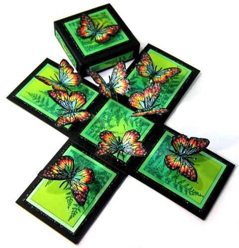 Коробочка своими руками для бабочки 317