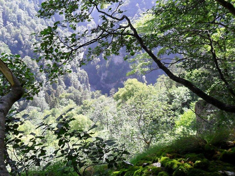Вид на долину Курджипса