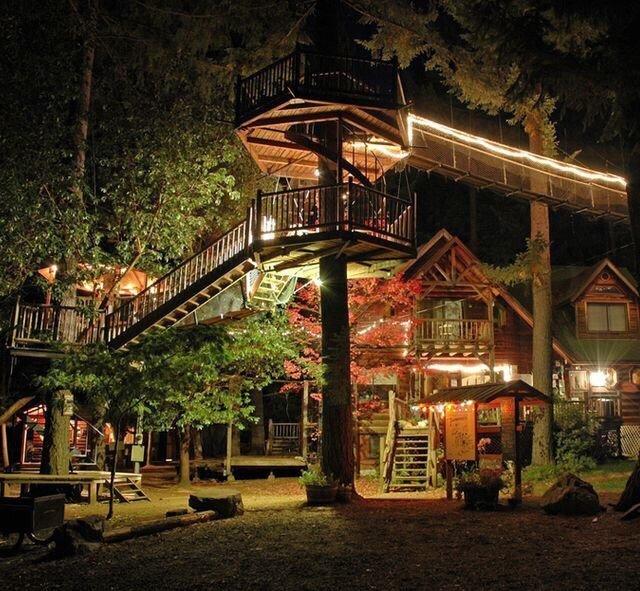 0 180197 c1705e8c orig - Дом на дереве - кто о нем не мечтал в детстве?