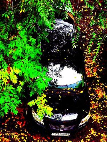 Глянец и багрянец! Городской импрессионистский пейзаж в моем дворе