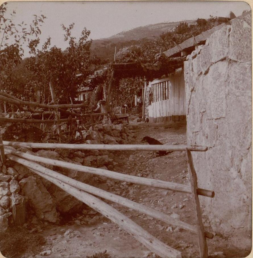 Село Никита