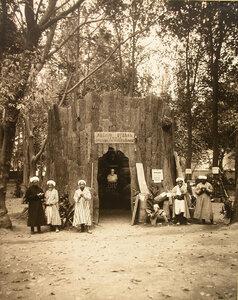 Группа местных жителей у входа в павильон лесного отдела имени И.И. Краузе.