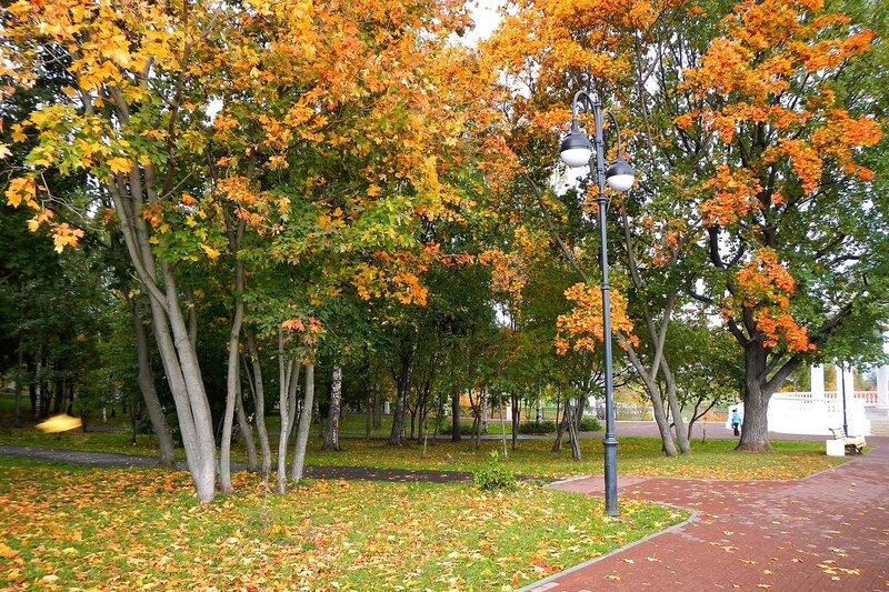 Осень в Александровском саду: золотые клёны и дубы