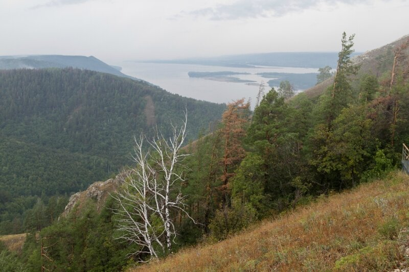 Панорама Жигулевских гор