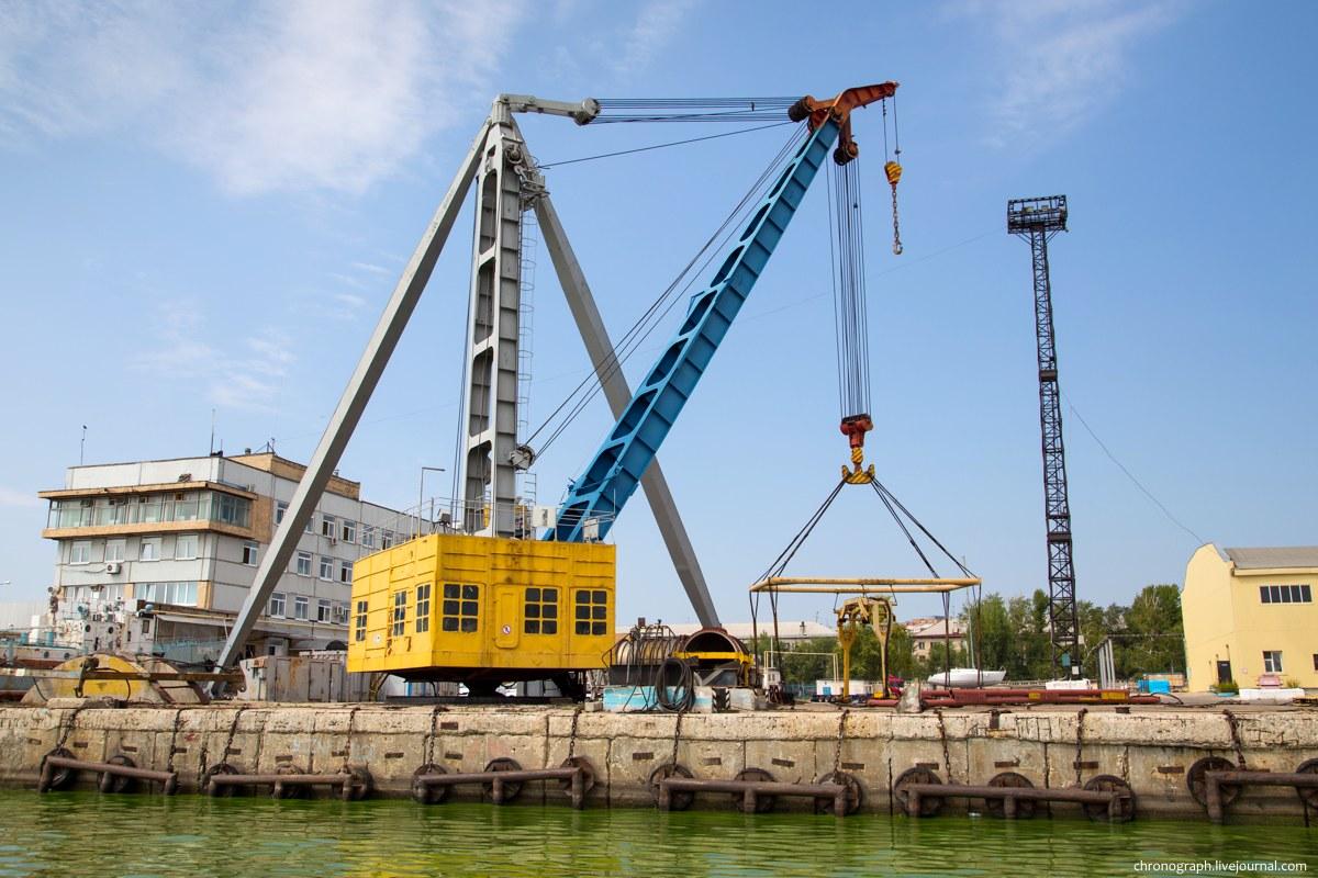 развитие генеральный директор порт фото тольятти вот уникальные экземпляры