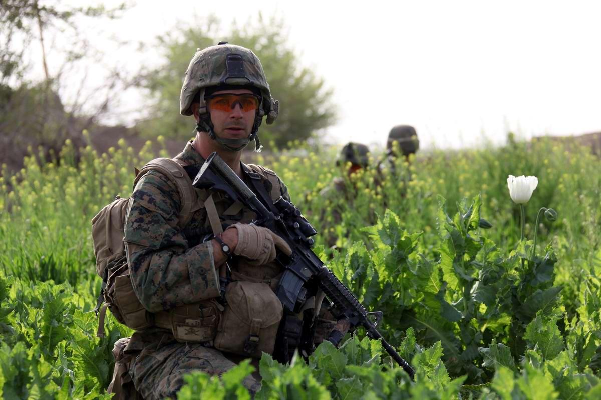 Посреди маковых полей Афганистана - фотографии военнослужащих корпуса морской пехоты США (19)