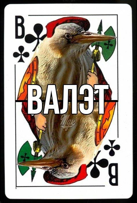 0 17a887 faab50f7 XL - Английский юмор в 30 фотографиях