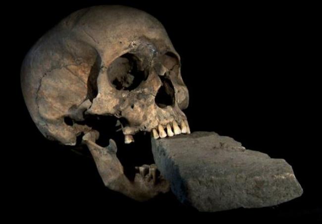 © nationalgeographic     Необычный артефакт был найден вНуово Лаззаретто (Lazzaretto Nuo