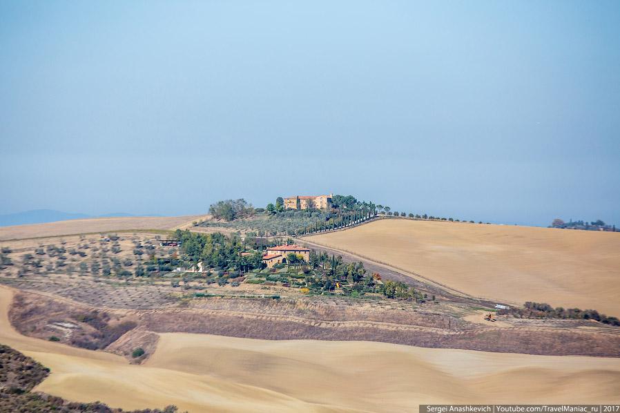 15. Еще одна характерная фишка тосканских полей — одинокие деревья посреди них. Потрясающе красиво,