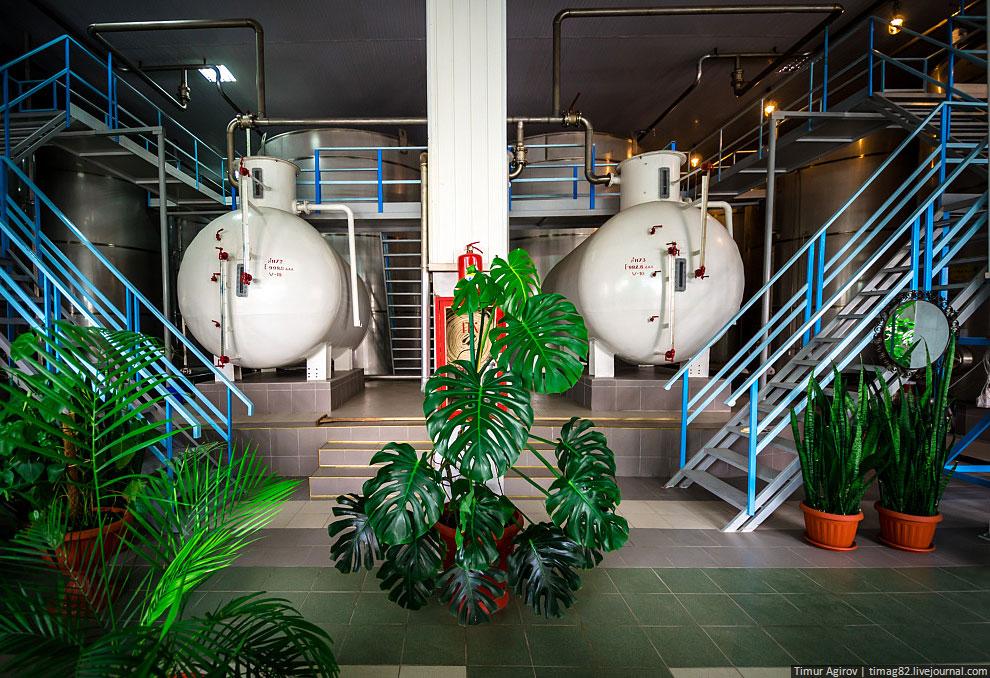 Задача цеха виноматериалов — первичный прием привезенных виноматериалов, их заливают в резервуары дл