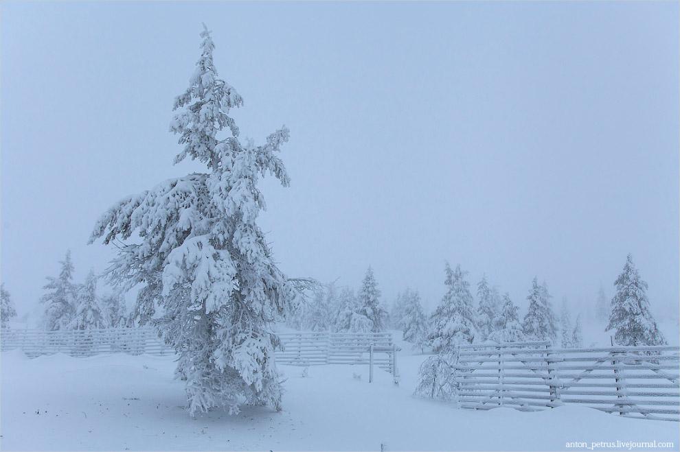 3. Россия, Териберка, февраль 2014: