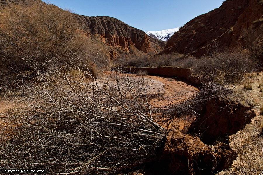 Панорама долины каньонов в лучах заходящего солнца. (Кликабельно,