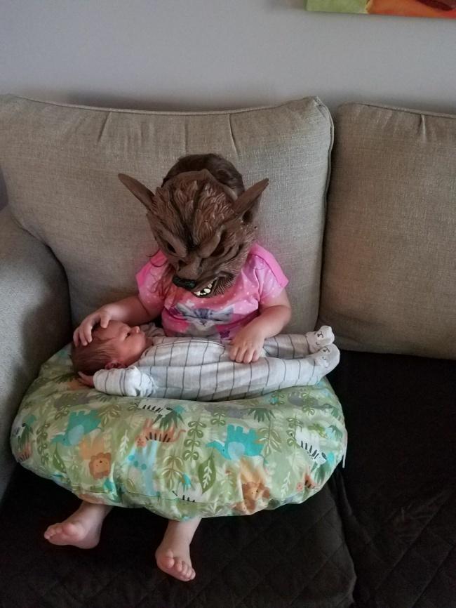 «Моя сестра — веган. Вчера она вернулась из бара и уснула на моем месте. Что ж, сюрприз!»
