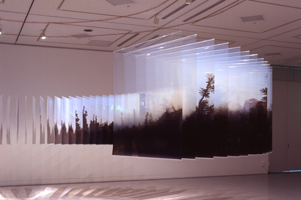 Installation view: Saturation, Osaka Contemporary Art Center, Japan? (2006), © Nobuhiro Nakanishi, C