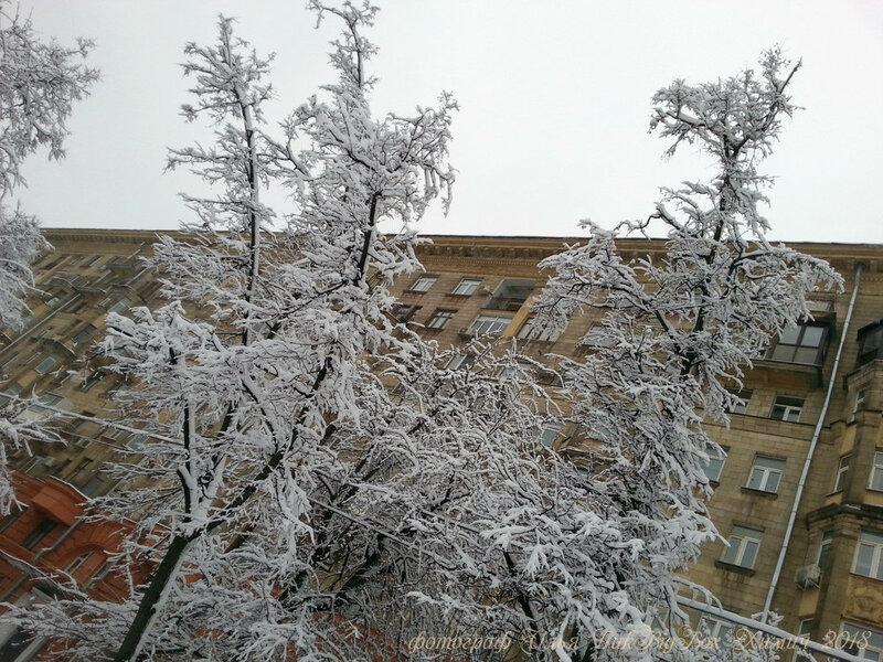 Снегопад в Москве, фотограф Илья LukBigBox Химич. Зима январь, февраль 2018 - 01