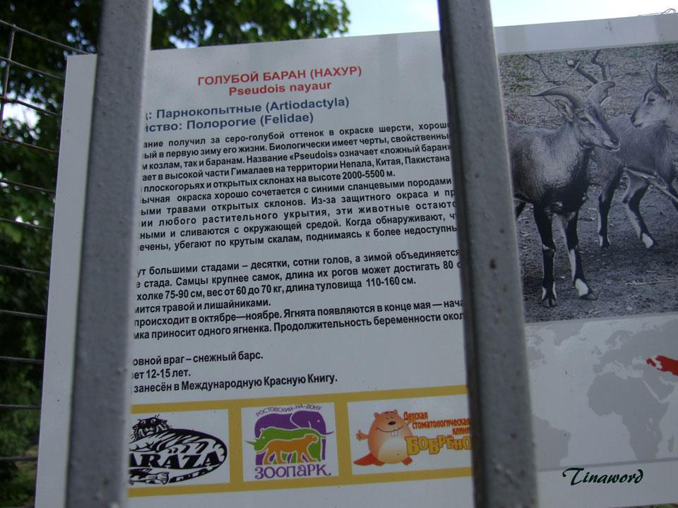 зоопарк-50.jpg