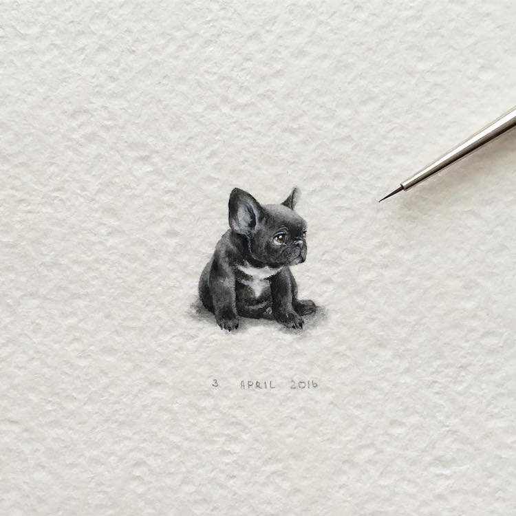 Miniature Paintings of Adorable Animals Capture Every Cute Little Detail (25 pics)