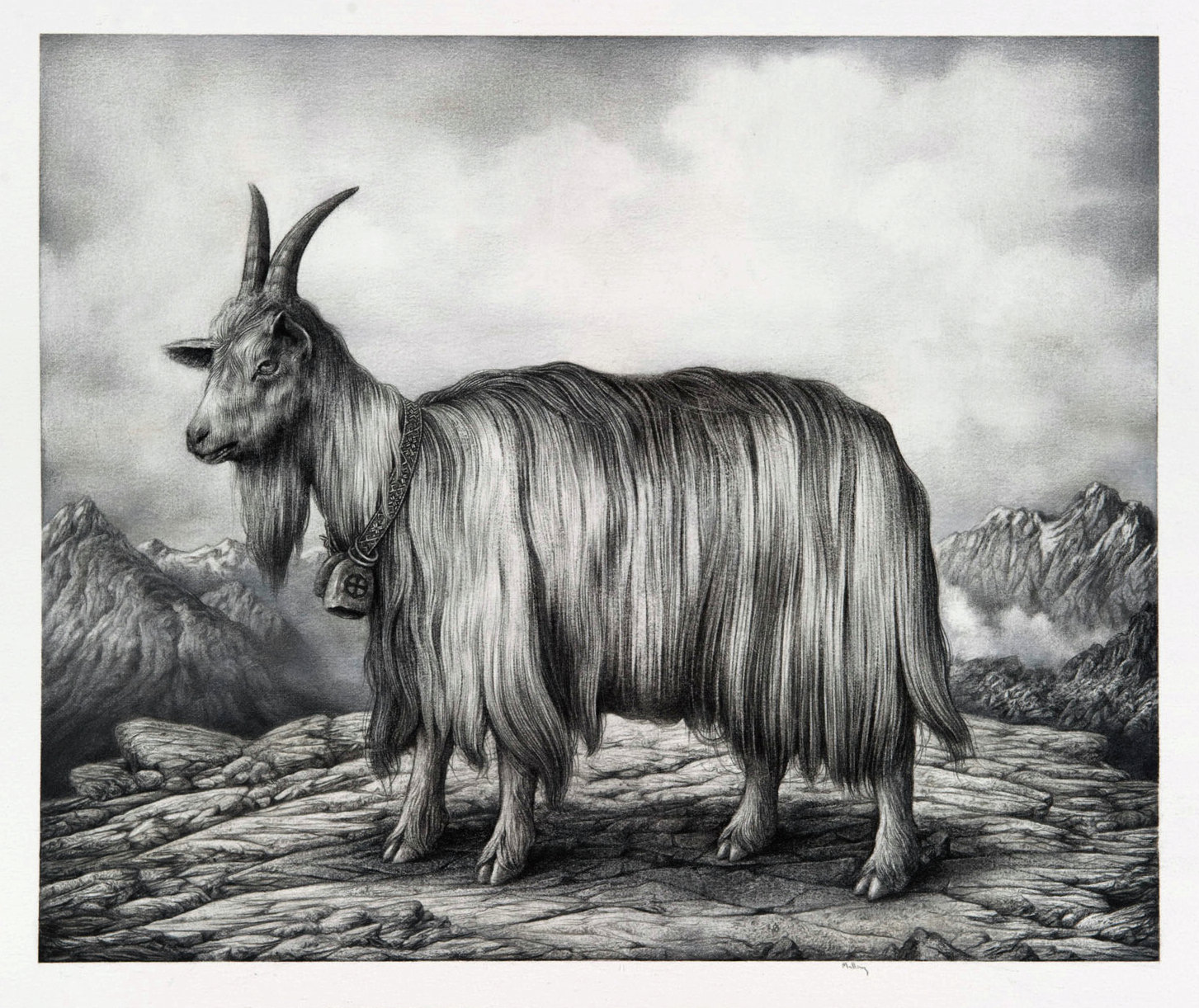 Charcoal Drawings by Sverre Malling