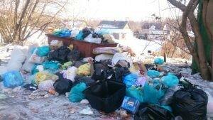 мусор в партизанке.jpg
