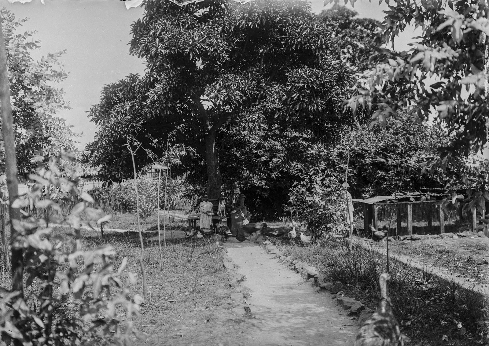 114. Станция немецкого общества Восточной Африки (ДОАГ) в Моши. Амели Йоханнес и девочка, кормящая цыплят в саду
