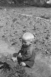 Малыш, сидящий на краю поля