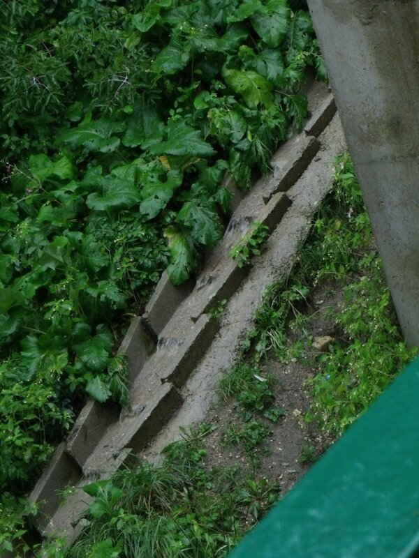 pervyj most (4).jpg