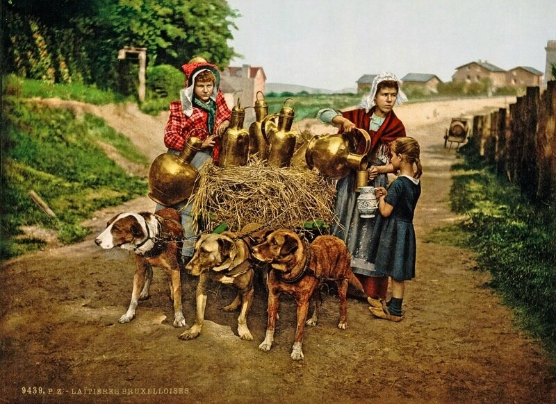 Milksellers, Brussels, Belgium2, ca. 1890-1900.jpg