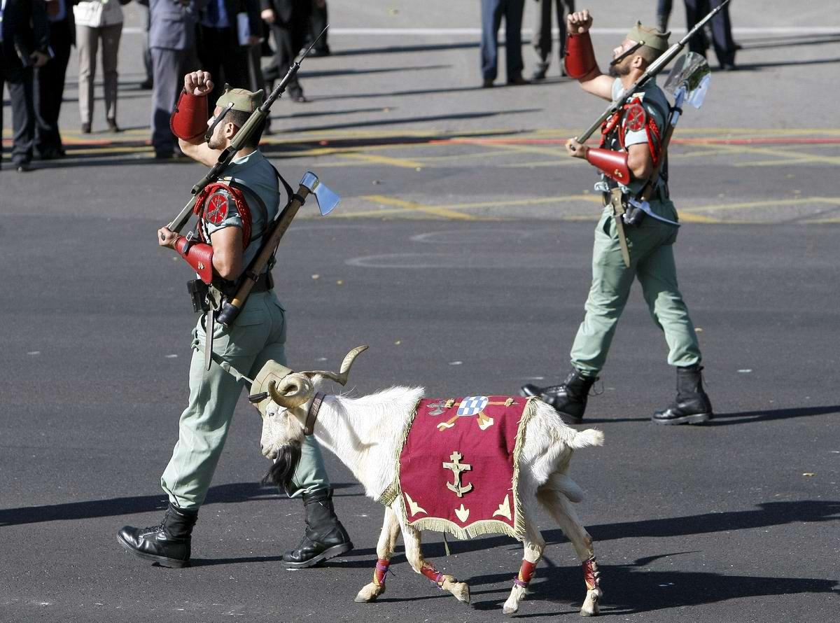 Про козла на веревочке и другие атрибуты Испанского легиона (19)
