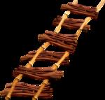 MRD_LOTD_bamboo ladder.png