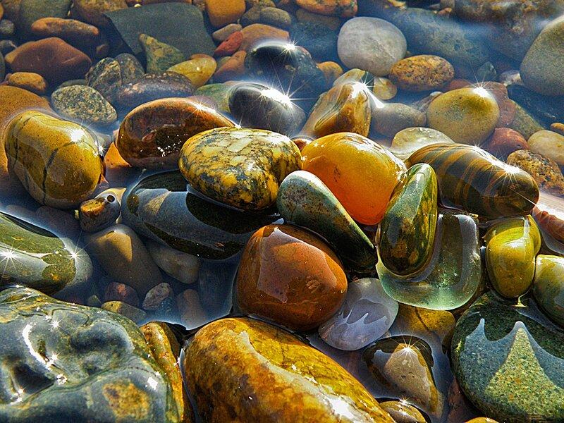 Мокрые камушки
