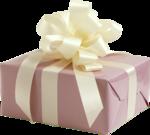 Present Boxser #1 (173).png