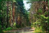 http://img-fotki.yandex.ru/get/48069/15842935.374/0_ea112_6d13a0dd_orig.jpg
