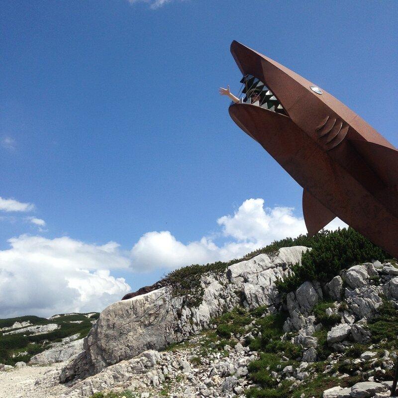 Помогите, меня сожрала страшная высокогорная акула!