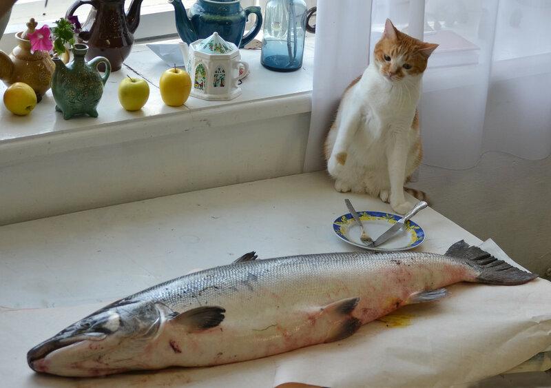 Открытка четверг рыбный день