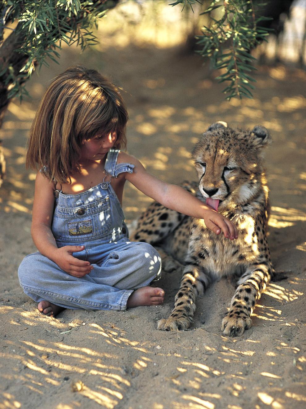 5. На птичьем острове в Африке, 1996 год. (Фото Sylvie Robert):