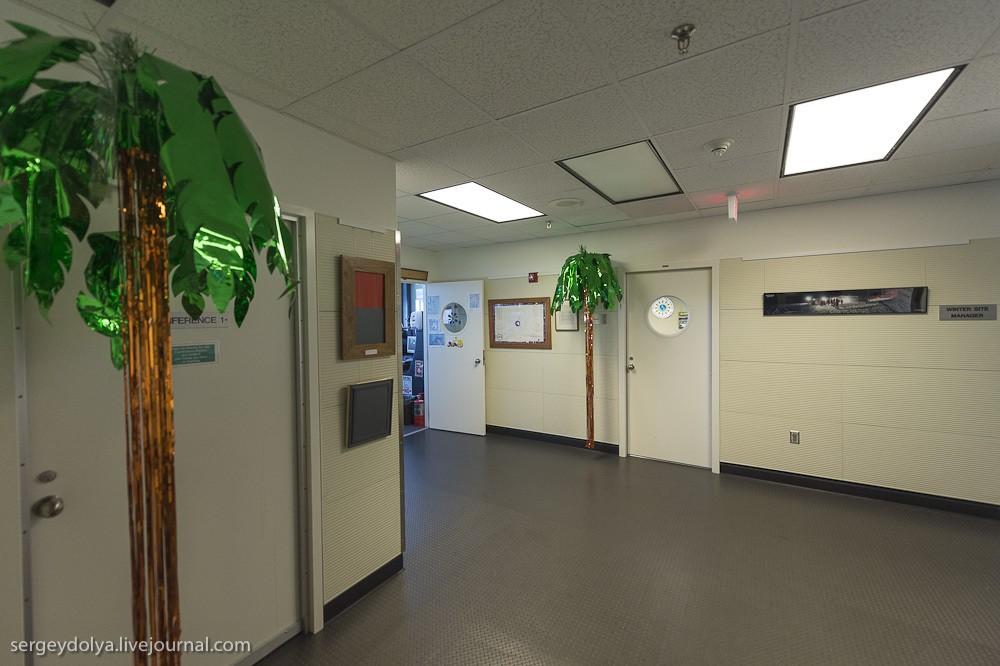23. Обратил внимание на гирлянды-пальмы, приделанные к потолку. Видимо, тоска по лету и теплу имеет