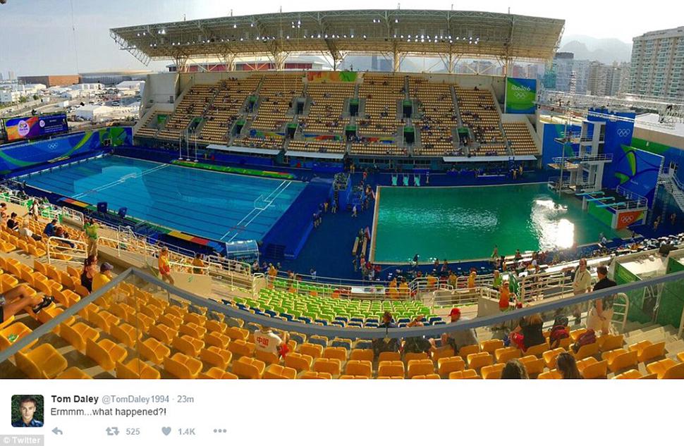 Бассейн на Олимпиаде в Рио вдруг позеленел, и никто не признается (14 фото)