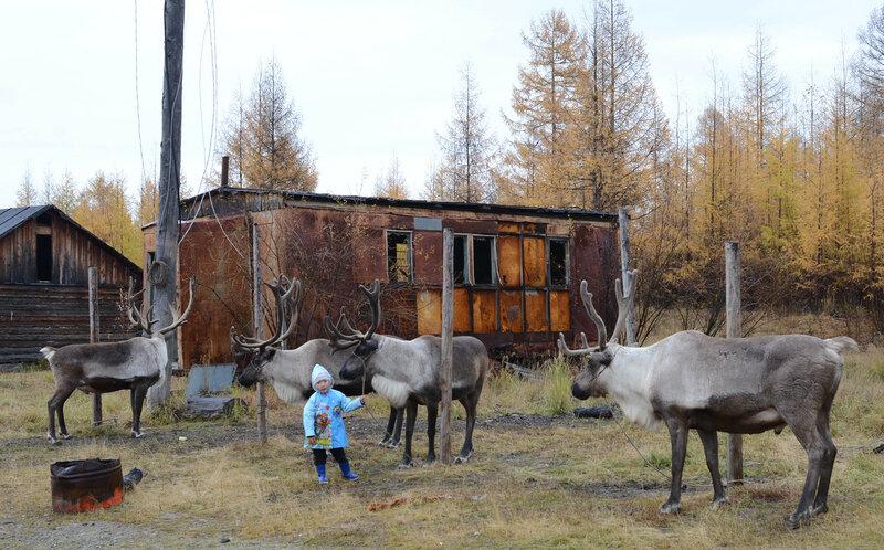 мальчик с оленями и дымокур.jpg