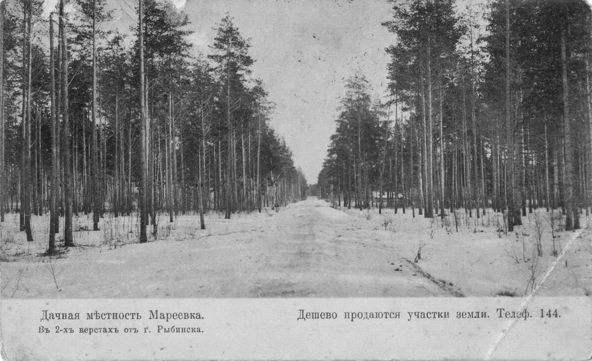 Окрестности Рыбинска. Дачное место Мареевка