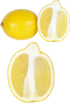 цитрусы (78).png