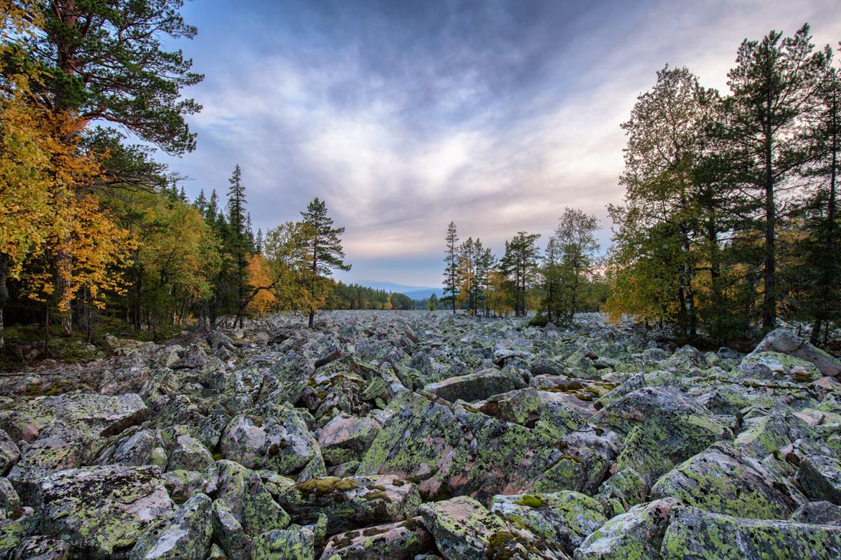 Осенняя Каменная река (29.09.2014)